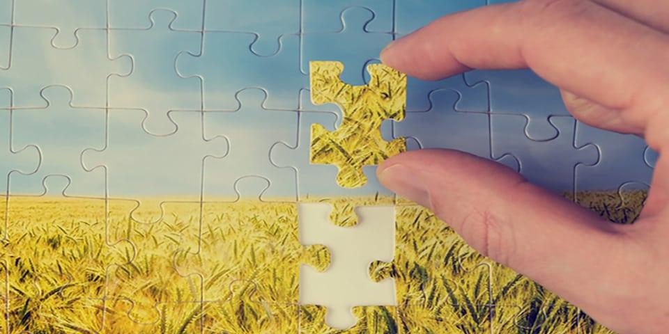 Letztes Puzzle-Teil